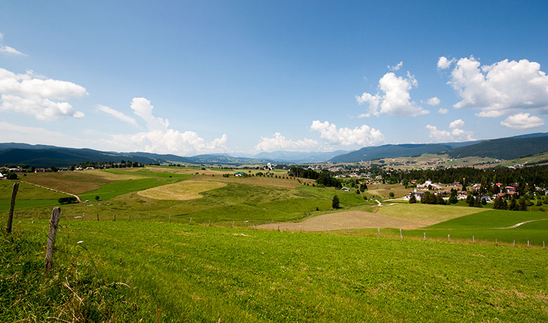 Summer panorama of the plateau