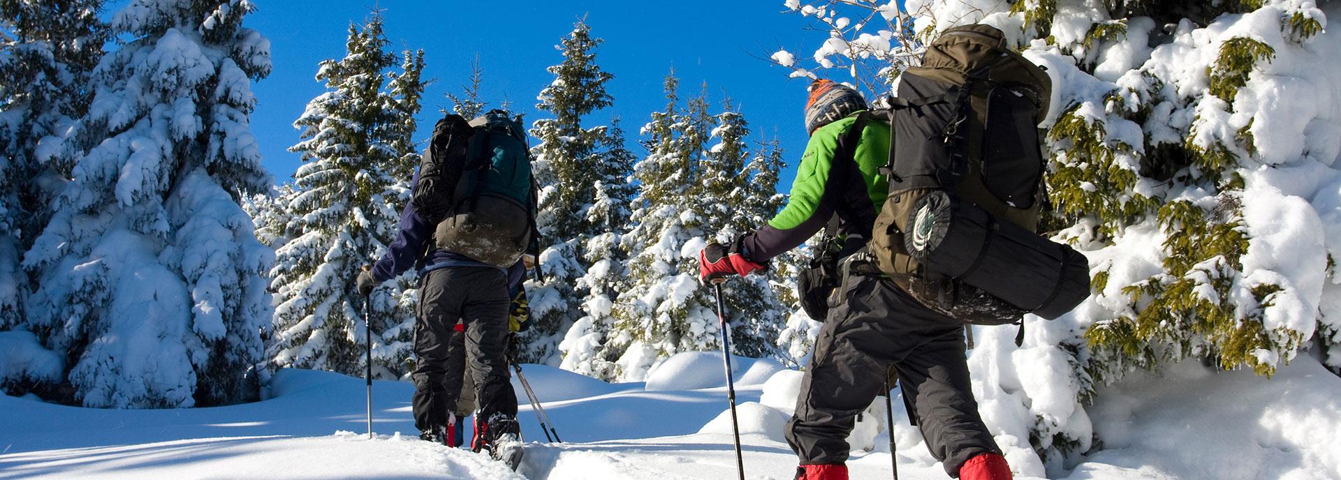Escursioni ed eventi nell'Altopiano