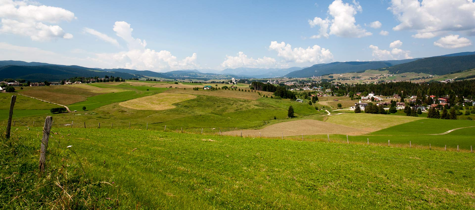 The plateau in summer